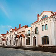 Kottedzhnyj-gorodok-«Aleksandrijskij»-arochnye-okna-7