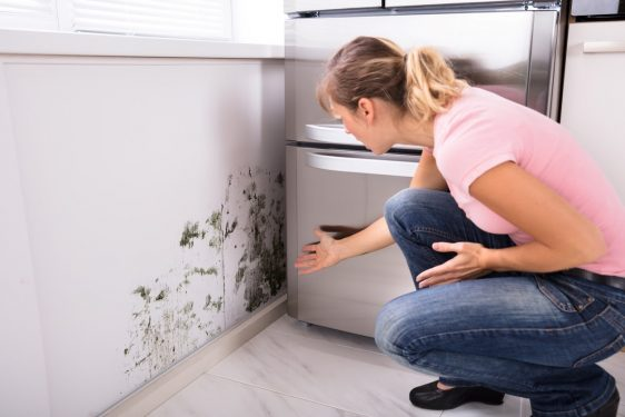 как избавится от сырости в доме